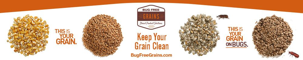 Click for Bug Free Grains